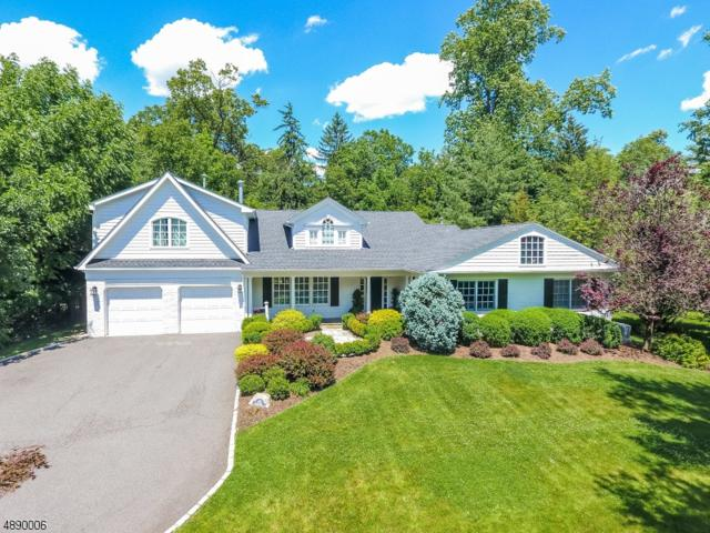 45 Joanna Way, Millburn Twp., NJ 07078 (MLS #3549559) :: SR Real Estate Group