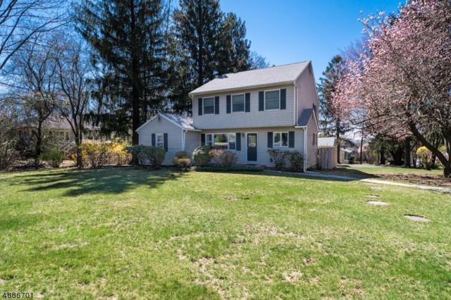 1054 Sussex Tpke, Randolph Twp., NJ 07869 (MLS #3549571) :: The Douglas Tucker Real Estate Team LLC