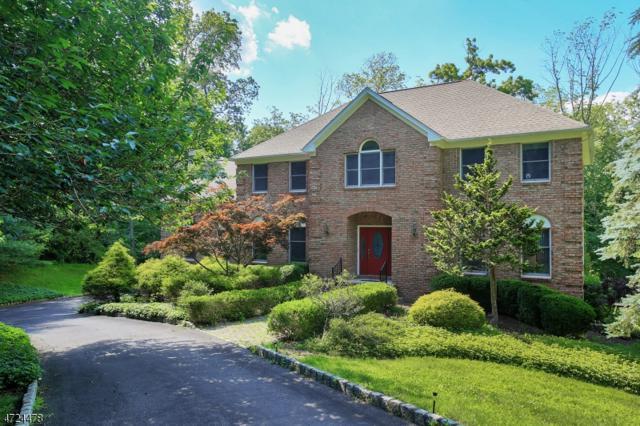 6 Apgar Way, Tewksbury Twp., NJ 08833 (#3549672) :: Jason Freeby Group at Keller Williams Real Estate