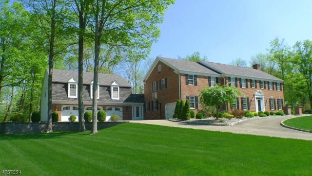 12 Cedar Glen Dr, Blairstown Twp., NJ 07825 (#3549674) :: Jason Freeby Group at Keller Williams Real Estate