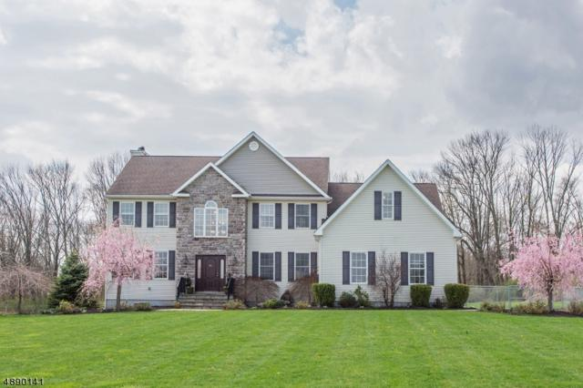 95 Auble Rd, Knowlton Twp., NJ 07825 (#3549699) :: Jason Freeby Group at Keller Williams Real Estate