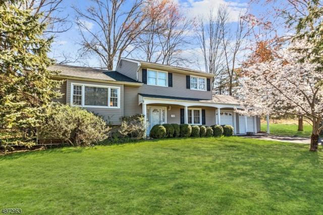 1132 Papen Rd, Bridgewater Twp., NJ 08807 (#3549716) :: Jason Freeby Group at Keller Williams Real Estate