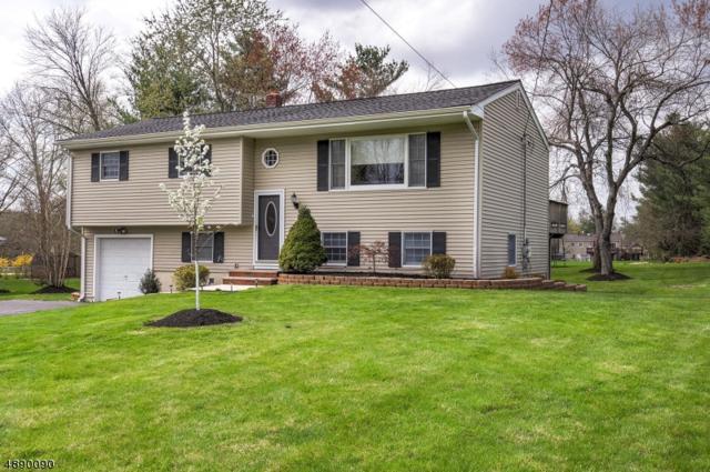 1371 Blair Ct, Bridgewater Twp., NJ 08807 (#3549719) :: Jason Freeby Group at Keller Williams Real Estate