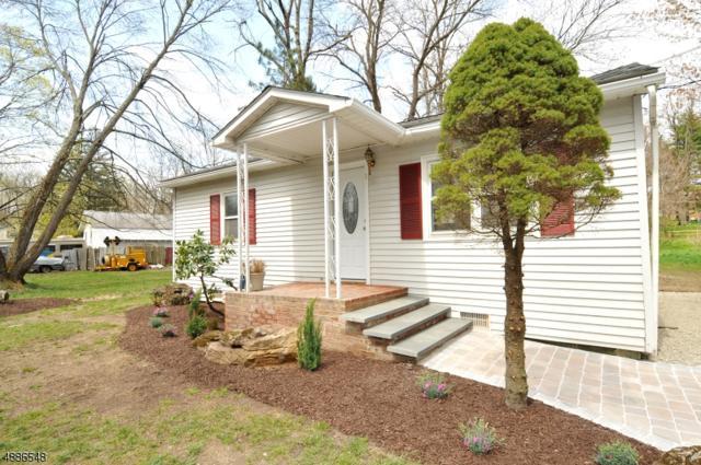1 Sandy Ln, Hope Twp., NJ 07825 (#3549793) :: Jason Freeby Group at Keller Williams Real Estate