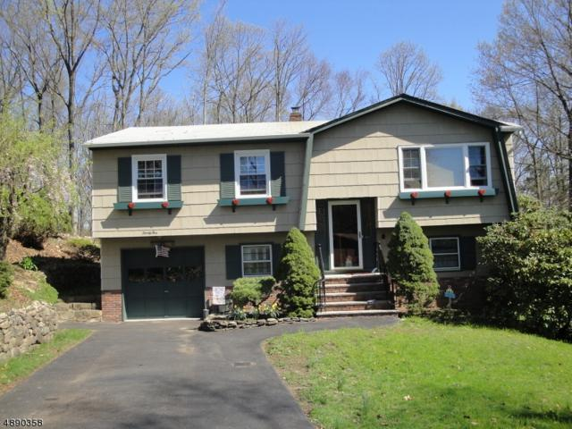 25 Mohawk Ave, Rockaway Twp., NJ 07866 (MLS #3549902) :: SR Real Estate Group