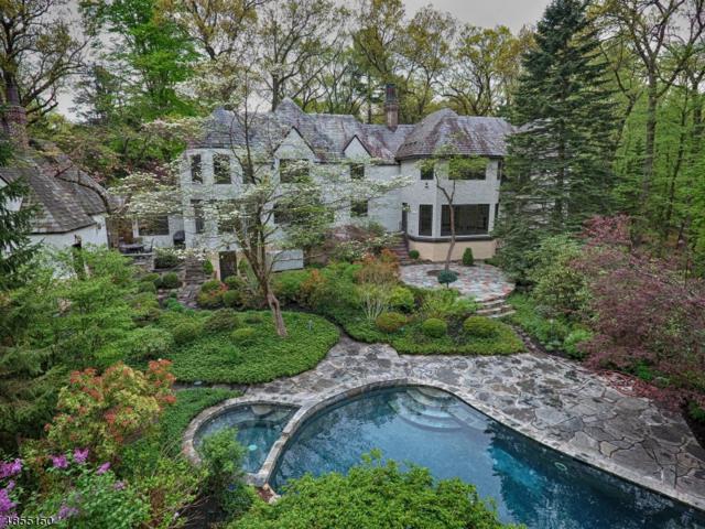 91 N Pocono Rd, Denville Twp., NJ 07834 (MLS #3550146) :: SR Real Estate Group