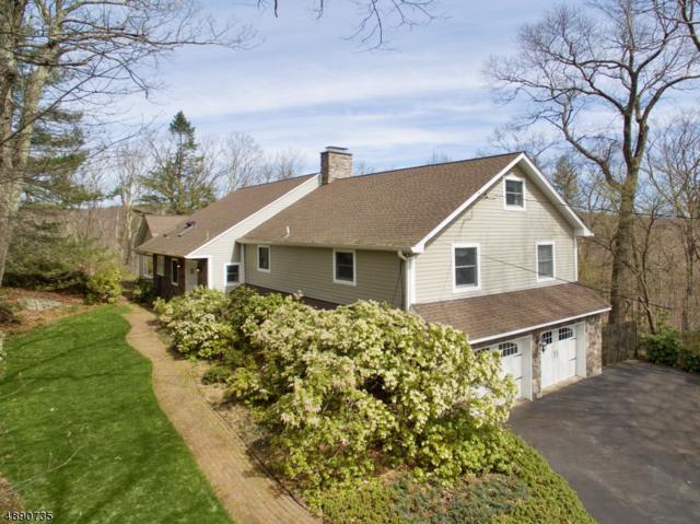 14 Pepperidge Tree Ter, Kinnelon Boro, NJ 07405 (MLS #3550261) :: SR Real Estate Group