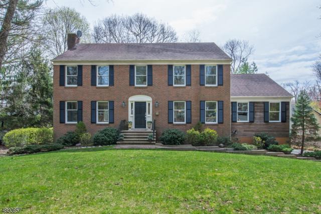100 Boulevard, Mountain Lakes Boro, NJ 07046 (MLS #3550348) :: SR Real Estate Group
