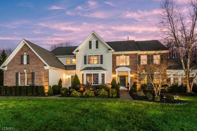 4 Overlook Rd, Readington Twp., NJ 08889 (MLS #3550368) :: REMAX Platinum