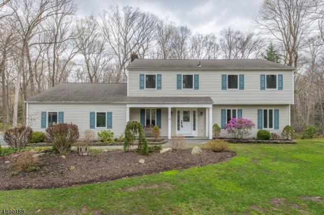 23 North Rd, Kinnelon Boro, NJ 07405 (MLS #3550456) :: SR Real Estate Group