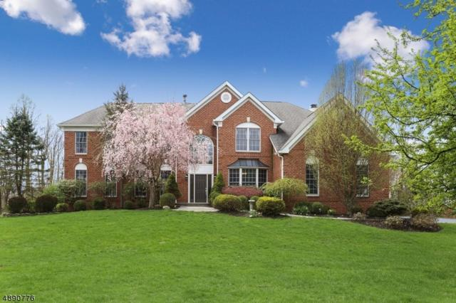 3 Middlesworth Farm Rd, Washington Twp., NJ 07853 (MLS #3550542) :: REMAX Platinum