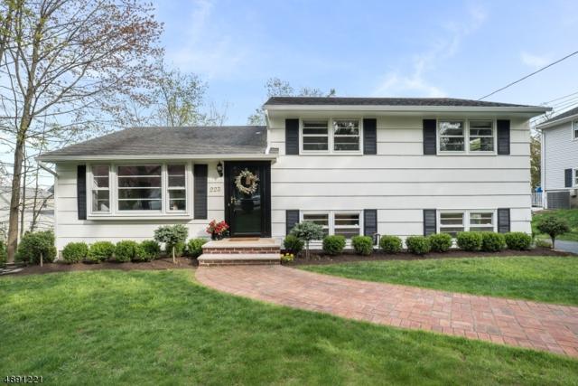 223 Hillside Ave, Chatham Boro, NJ 07928 (MLS #3550758) :: SR Real Estate Group