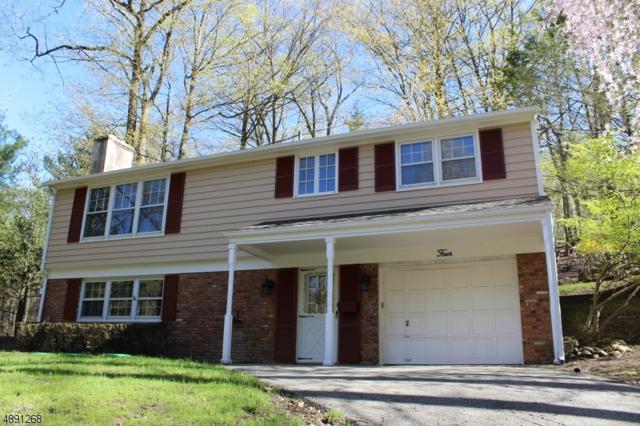 4 Sleepy Lagoon Ter, Byram Twp., NJ 07871 (MLS #3550844) :: SR Real Estate Group
