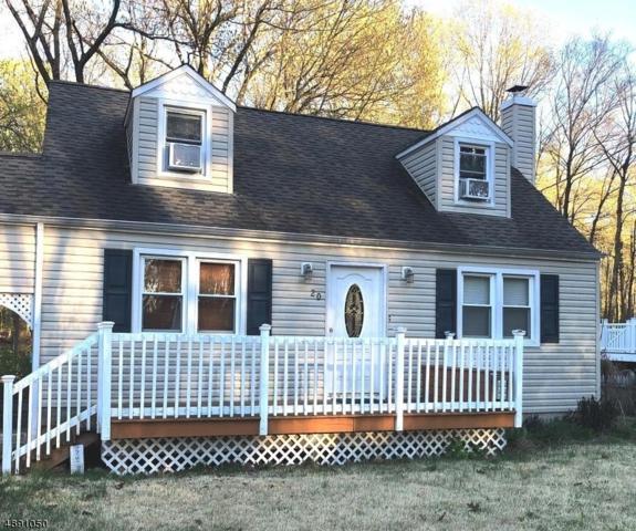 20 Zeek Road, Denville Twp., NJ 07834 (MLS #3550909) :: SR Real Estate Group