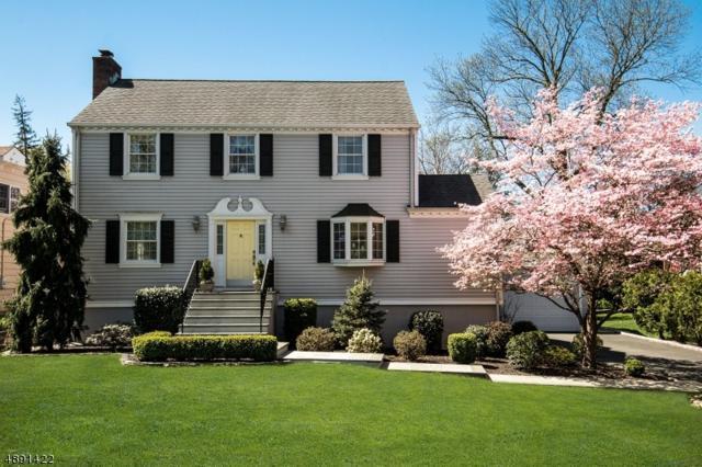 4 Park Dr, Cranford Twp., NJ 07016 (MLS #3550977) :: SR Real Estate Group