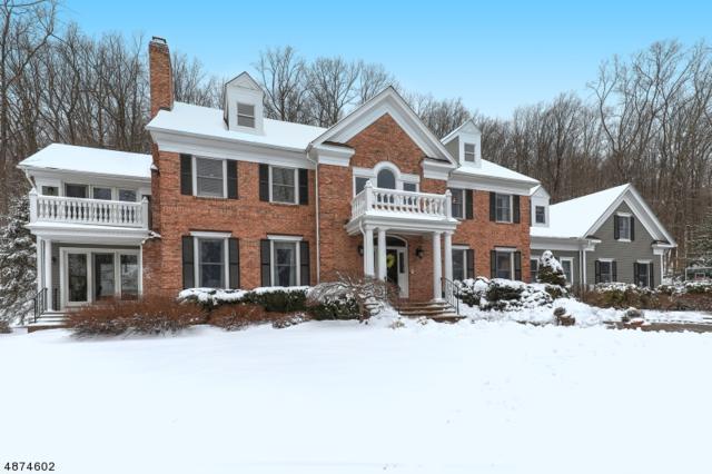 35 Old Orchard Rd, Mendham Twp., NJ 07960 (MLS #3550997) :: SR Real Estate Group