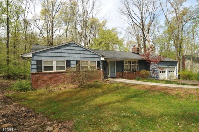 111 Cedar Green Ln, Berkeley Heights Twp., NJ 07922 (MLS #3551029) :: SR Real Estate Group
