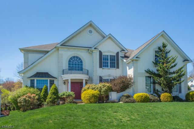 1 Willow Ct, Mount Olive Twp., NJ 07836 (MLS #3551268) :: Coldwell Banker Residential Brokerage