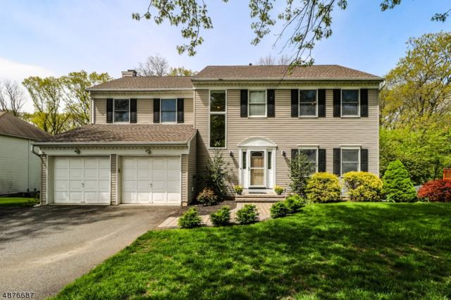 19 Pittenger Rd, Readington Twp., NJ 08887 (MLS #3552536) :: The Debbie Woerner Team