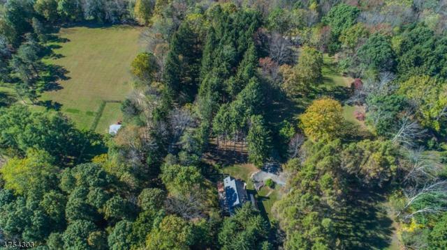 7 Drew Mountain Rd, Vernon Twp., NJ 07461 (MLS #3552790) :: William Raveis Baer & McIntosh