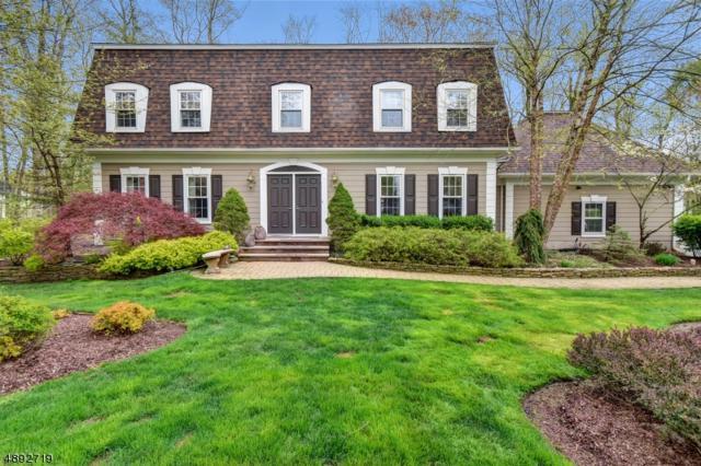 19 Red Barn Ln, Randolph Twp., NJ 07869 (MLS #3553043) :: William Raveis Baer & McIntosh
