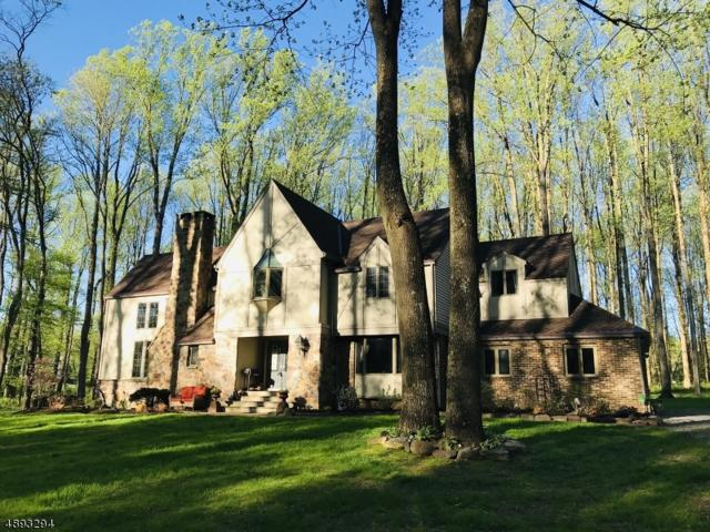 30 Locktown Sergeantsville, Delaware Twp., NJ 08559 (MLS #3553202) :: Team Francesco/Christie's International Real Estate