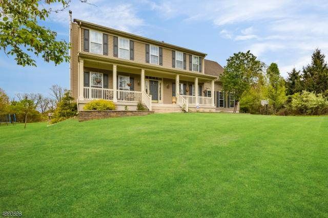 247 Still Valley Rd, Pohatcong Twp., NJ 08804 (MLS #3553206) :: SR Real Estate Group