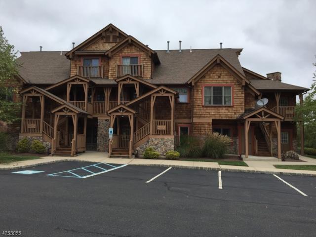12 Pine Cres #13, Vernon Twp., NJ 07462 (MLS #3553665) :: The Debbie Woerner Team