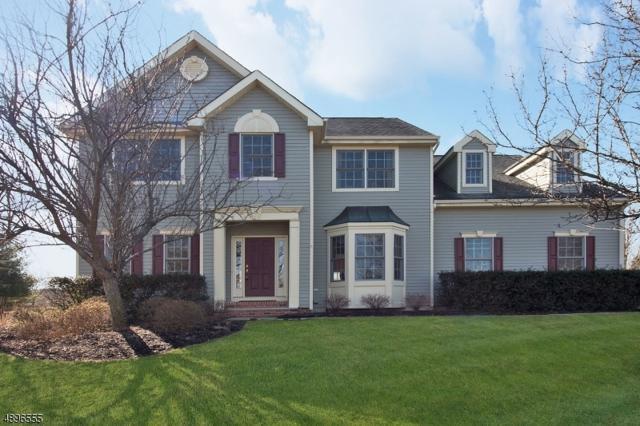 5 Boyne Highlands Ct, Montgomery Twp., NJ 08558 (MLS #3555902) :: SR Real Estate Group