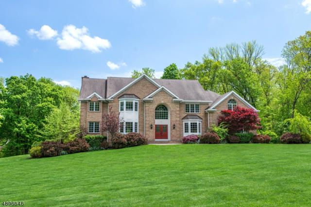 3 Shadowbrook Ln, Bernards Twp., NJ 07920 (MLS #3555979) :: The Dekanski Home Selling Team