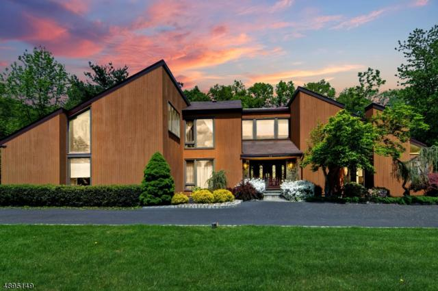 12 Ditzel Farm Ct, Scotch Plains Twp., NJ 07076 (MLS #3556209) :: The Debbie Woerner Team