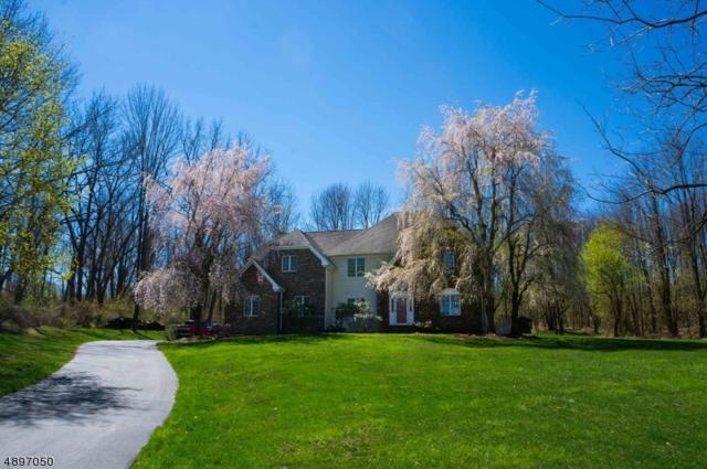6 Apgar Farm Rd, Franklin Twp., NJ 08867 (MLS #3556334) :: Weichert Realtors