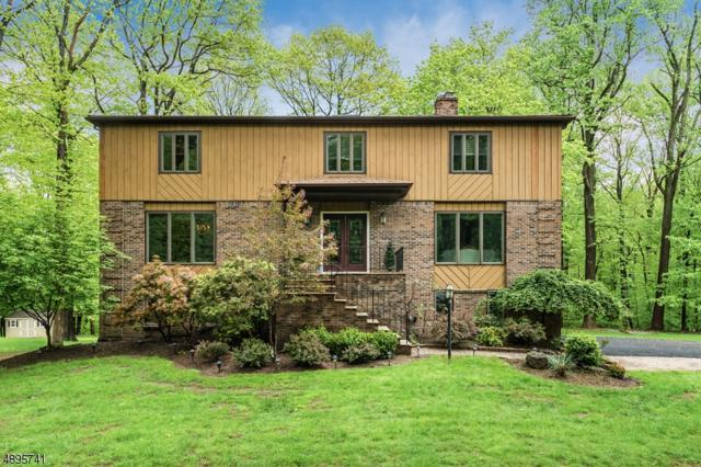 15 Black Birch Dr, Randolph Twp., NJ 07869 (MLS #3557078) :: REMAX Platinum