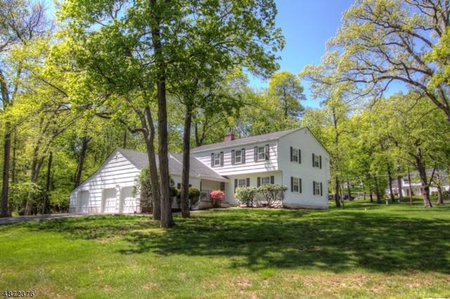 1 Buckley Hill Rd, Morris Twp., NJ 07960 (MLS #3557082) :: The Debbie Woerner Team