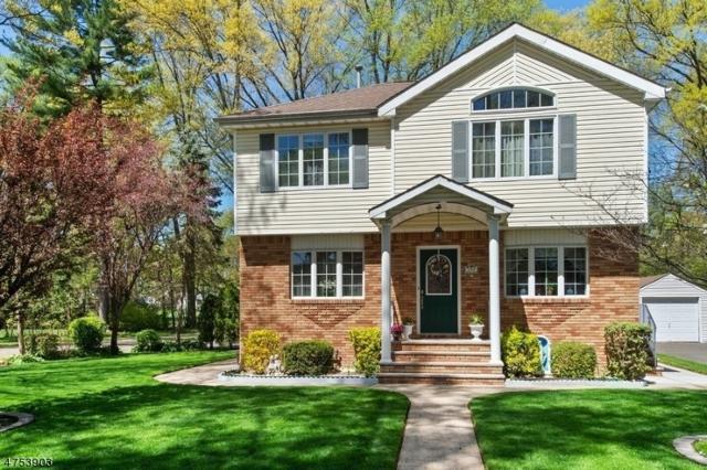 159 Denman Rd, Cranford Twp., NJ 07016 (#3557174) :: Daunno Realty Services, LLC