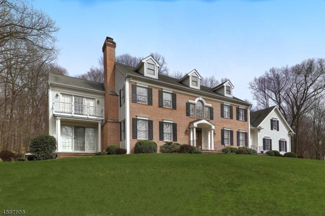 7 Woodlawn Terrace, Mendham Twp., NJ 07945 (MLS #3557565) :: Pina Nazario