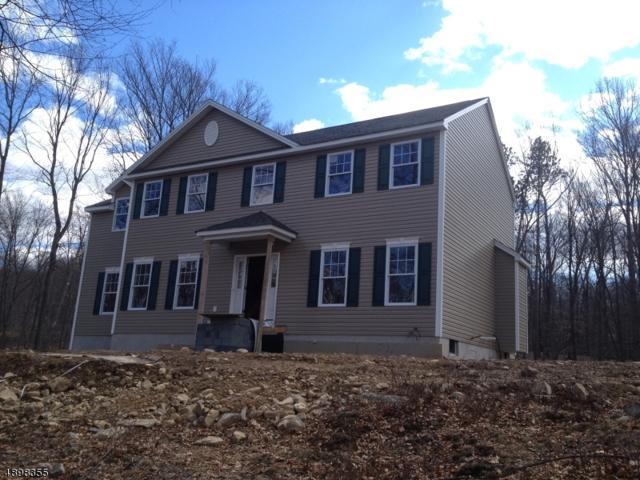 3 Eileens Way, Andover Twp., NJ 07821 (MLS #3557581) :: REMAX Platinum