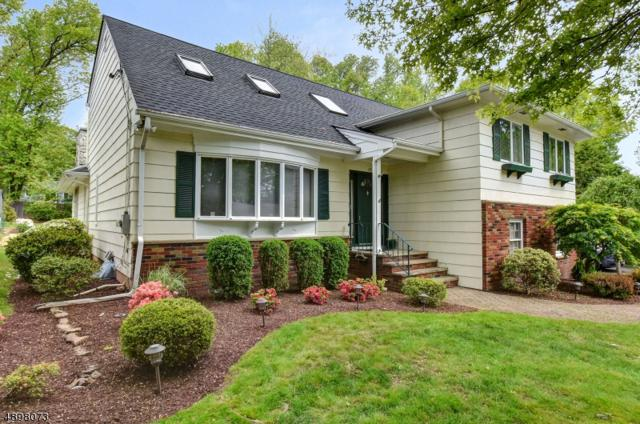 13 Tree Top Dr, Springfield Twp., NJ 07081 (MLS #3557670) :: REMAX Platinum