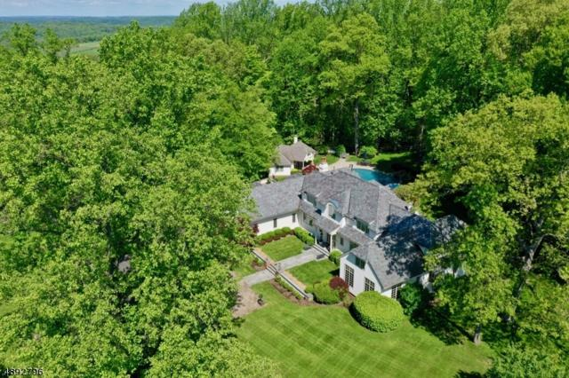 141 Dryden Rd, Bernardsville Boro, NJ 07924 (MLS #3557794) :: The Dekanski Home Selling Team