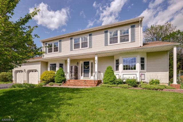 118 Van Dyke Ct, Hillsborough Twp., NJ 08844 (MLS #3557810) :: The Sue Adler Team