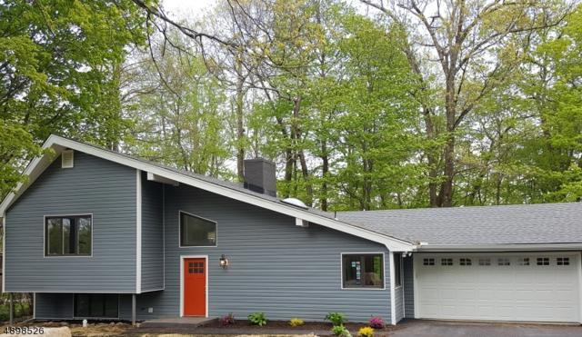 18 Neosha Rd, Vernon Twp., NJ 07422 (MLS #3557859) :: The Dekanski Home Selling Team