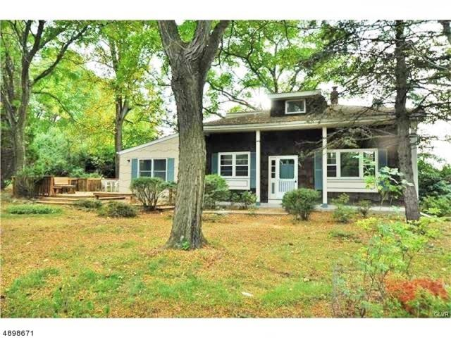 249 Mt Airy Rd, Lebanon Twp., NJ 08826 (#3557919) :: Group BK