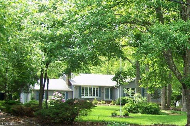 1362 Crim Rd, Bridgewater Twp., NJ 08807 (MLS #3558077) :: SR Real Estate Group