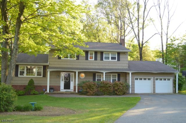 6 Country Lane, Randolph Twp., NJ 07869 (MLS #3558257) :: Zebaida Group at Keller Williams Realty