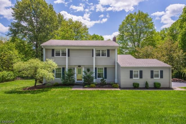 217 Mooney Rd, Roxbury Twp., NJ 07836 (MLS #3558341) :: The Sue Adler Team