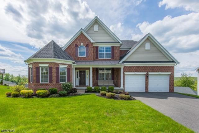 16 Pfrommer Ave, Mount Olive Twp., NJ 07828 (MLS #3558354) :: The Sue Adler Team