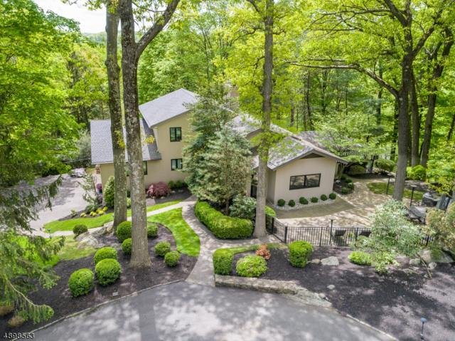 20 Brush Hill Rd, Kinnelon Boro, NJ 07405 (MLS #3558442) :: Pina Nazario