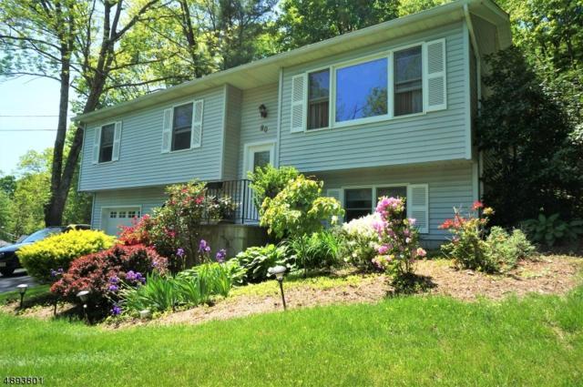 80 Schawungunk Trail, Wantage Twp., NJ 07461 (MLS #3558544) :: The Sue Adler Team