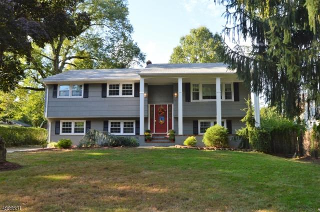 881 Raritan Rd, Scotch Plains Twp., NJ 07076 (#3558791) :: Daunno Realty Services, LLC