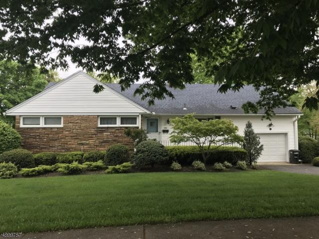 230 Mulberry Pl, Ridgewood Village, NJ 07450 (MLS #3558898) :: William Raveis Baer & McIntosh